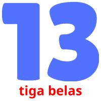 tiga belas picture flashcards