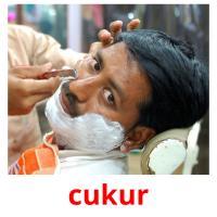 cukur picture flashcards