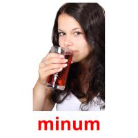 minum picture flashcards
