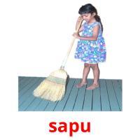 sapu picture flashcards