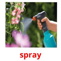 spray picture flashcards