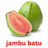 jambu batu picture flashcards