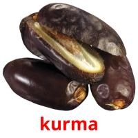 kurma picture flashcards
