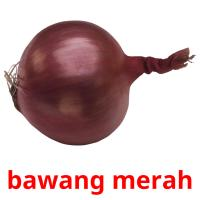 bawang merah picture flashcards