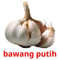 bawang putih picture flashcards