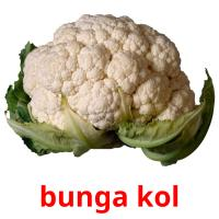 bunga kol picture flashcards