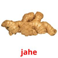 jahe picture flashcards
