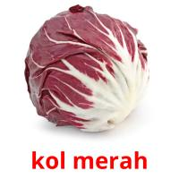 kol merah picture flashcards