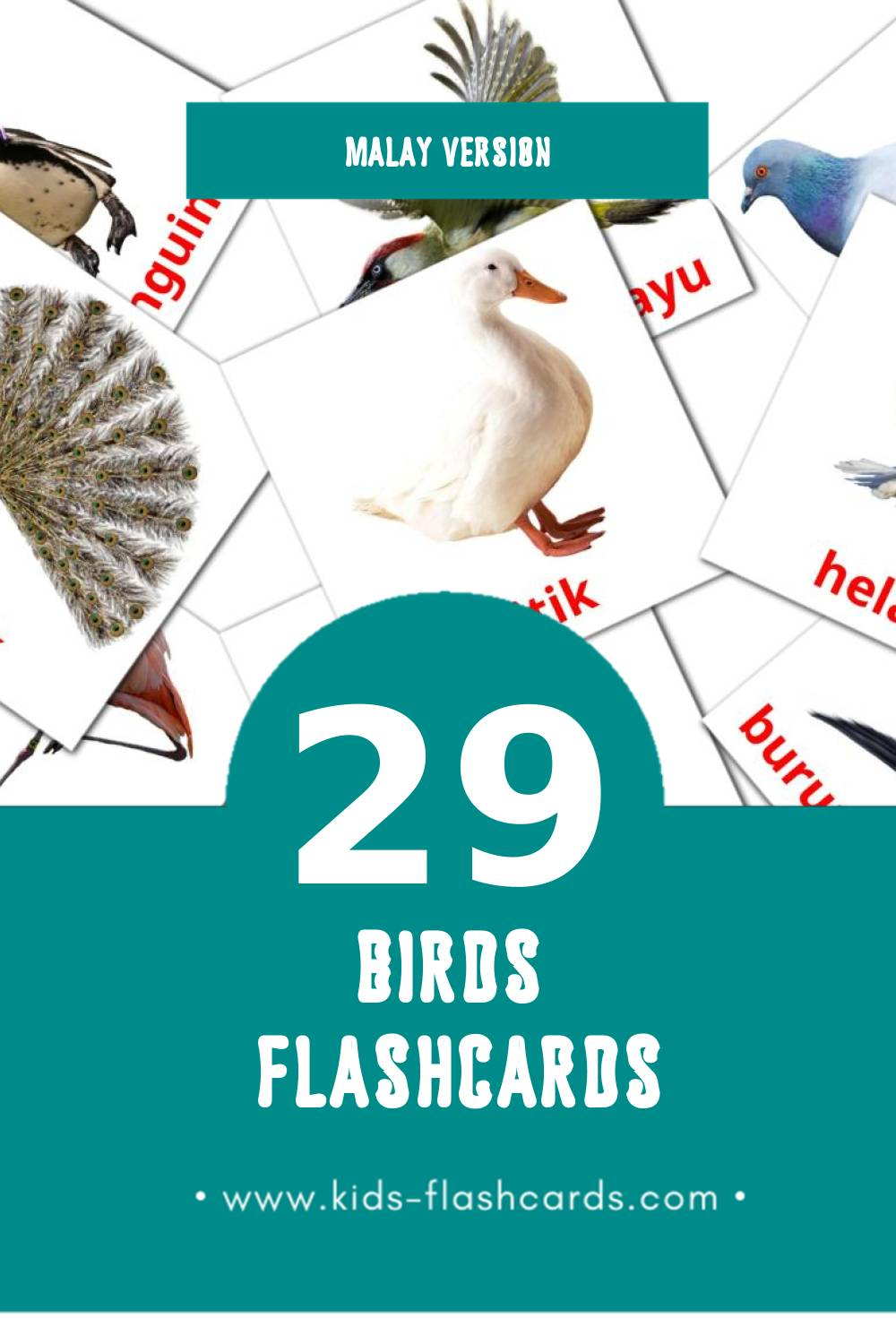 Visual burung  Flashcards for Toddlers (18 cards in Malay)