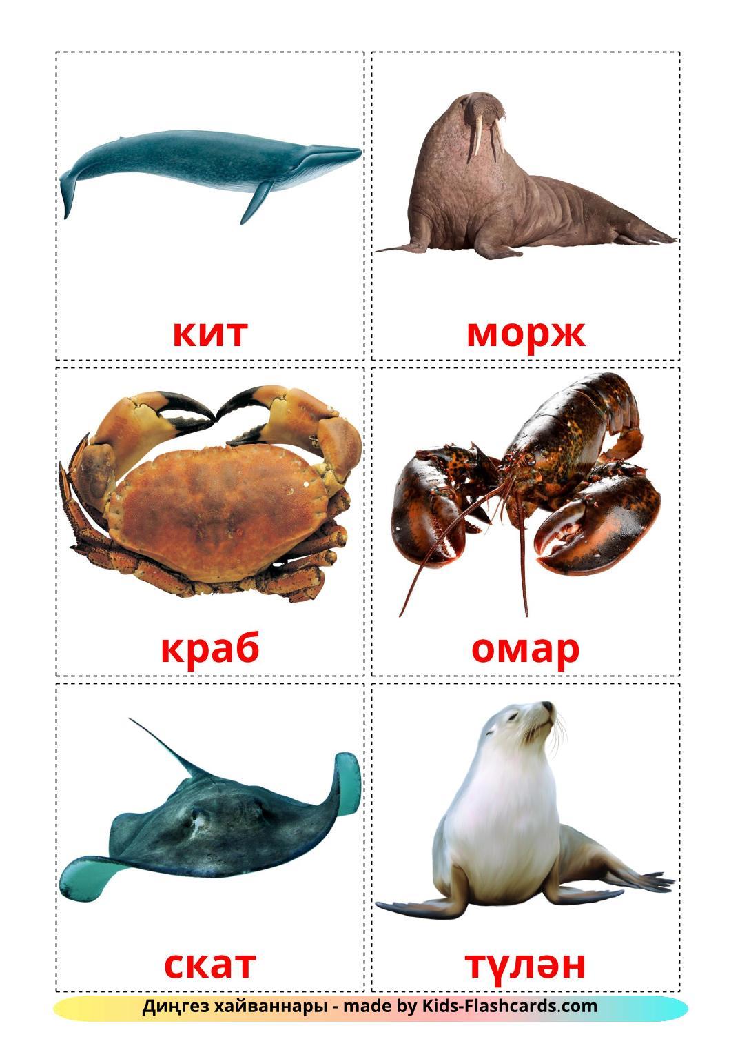 Sea animals - 29 Free Printable tatar Flashcards