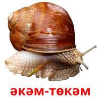 әкәм-төкәм picture flashcards