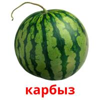 карбыз picture flashcards