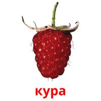 кура picture flashcards