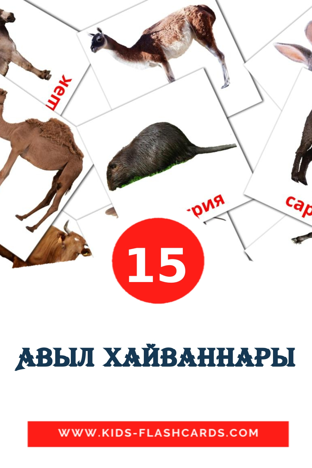 15 Авыл хайваннары Picture Cards for Kindergarden in tatar