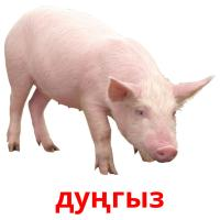 дуңгыз card for translate