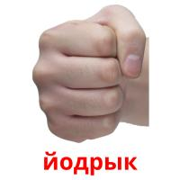 йодрык picture flashcards