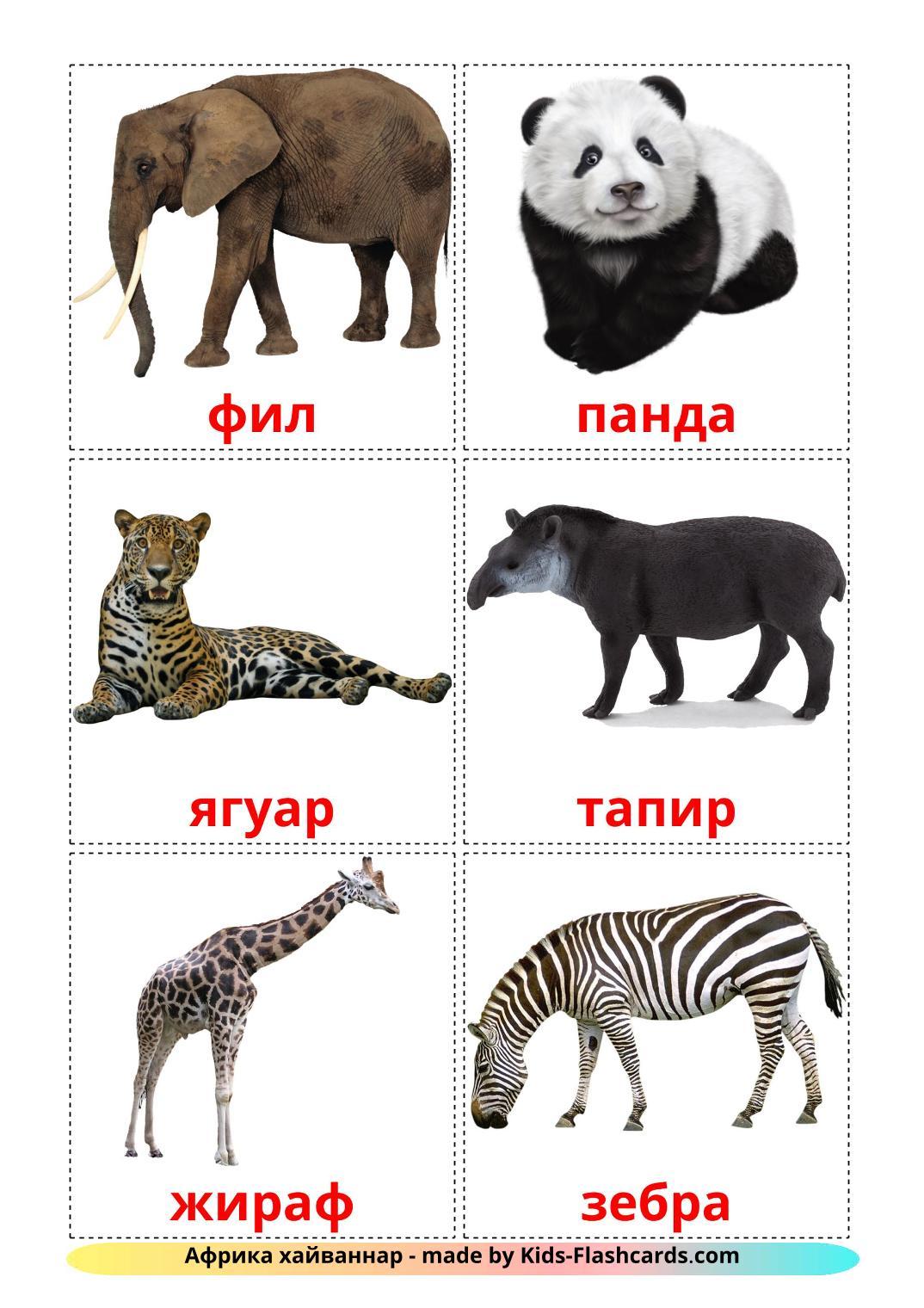 Jungle animals - 21 Free Printable tatar Flashcards