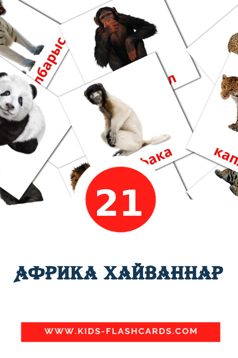 21 Африка хайваннар Picture Cards for Kindergarden in tatar