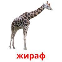 жираф picture flashcards