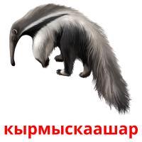 кырмыскаашар picture flashcards
