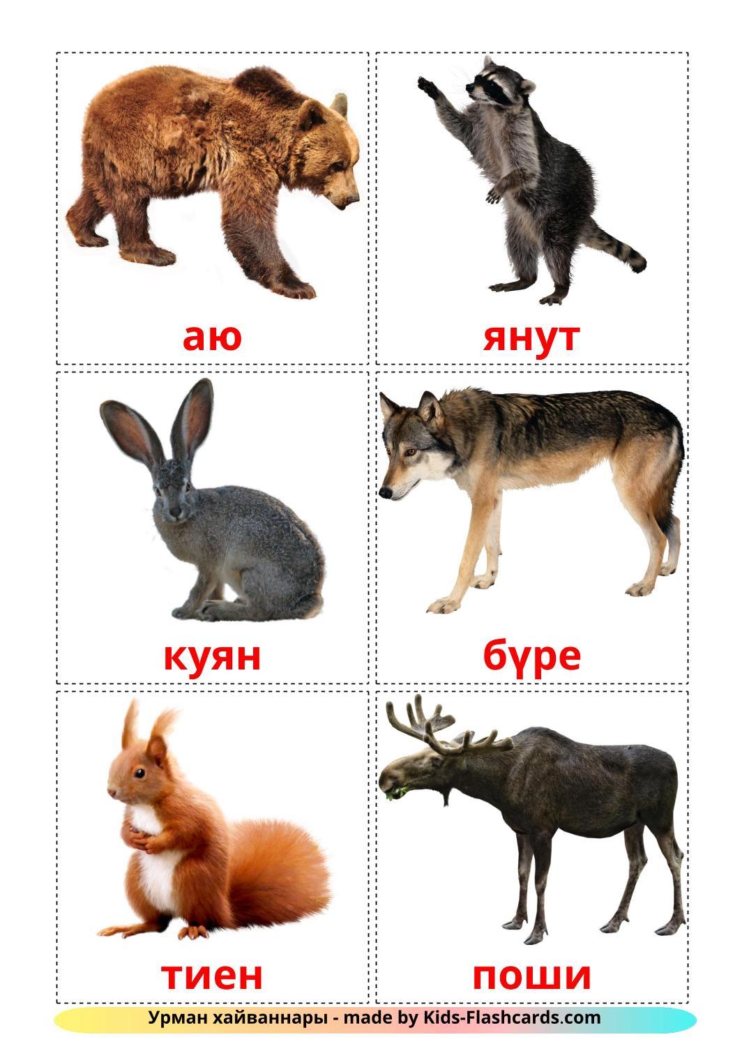 Лесные животные - 22 Карточки Домана на татарском