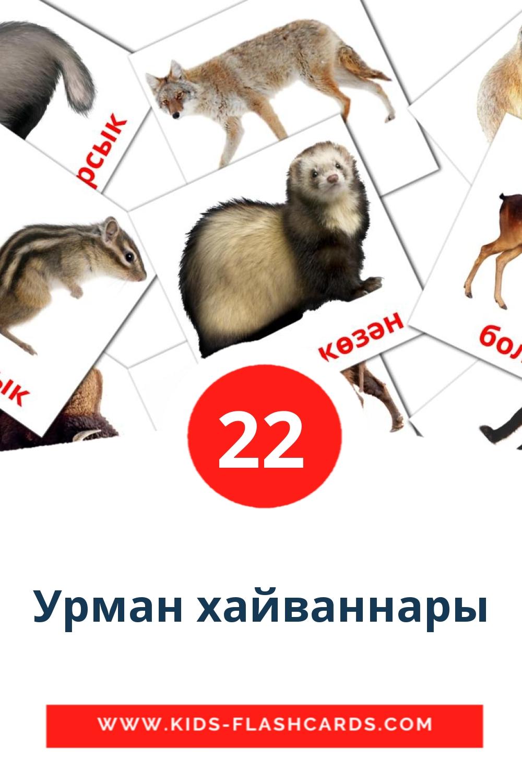 Урман хайваннары на татарском для Детского Сада (22 карточки)