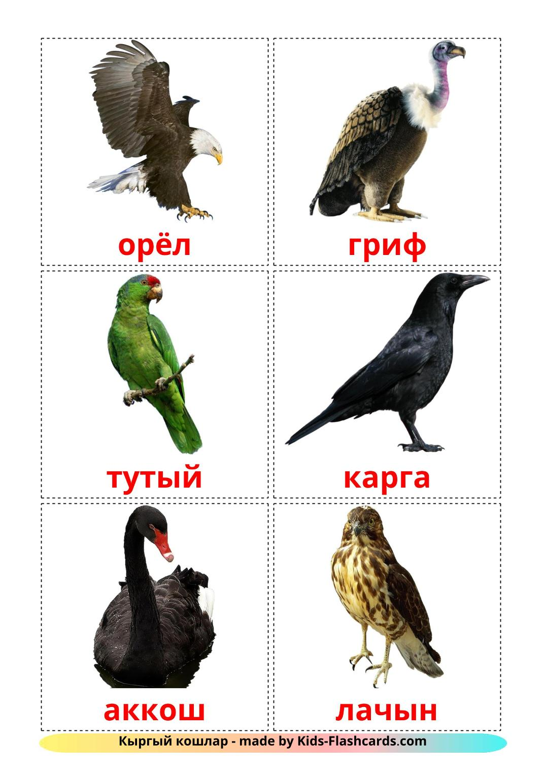 Wild birds - 18 Free Printable tatar Flashcards