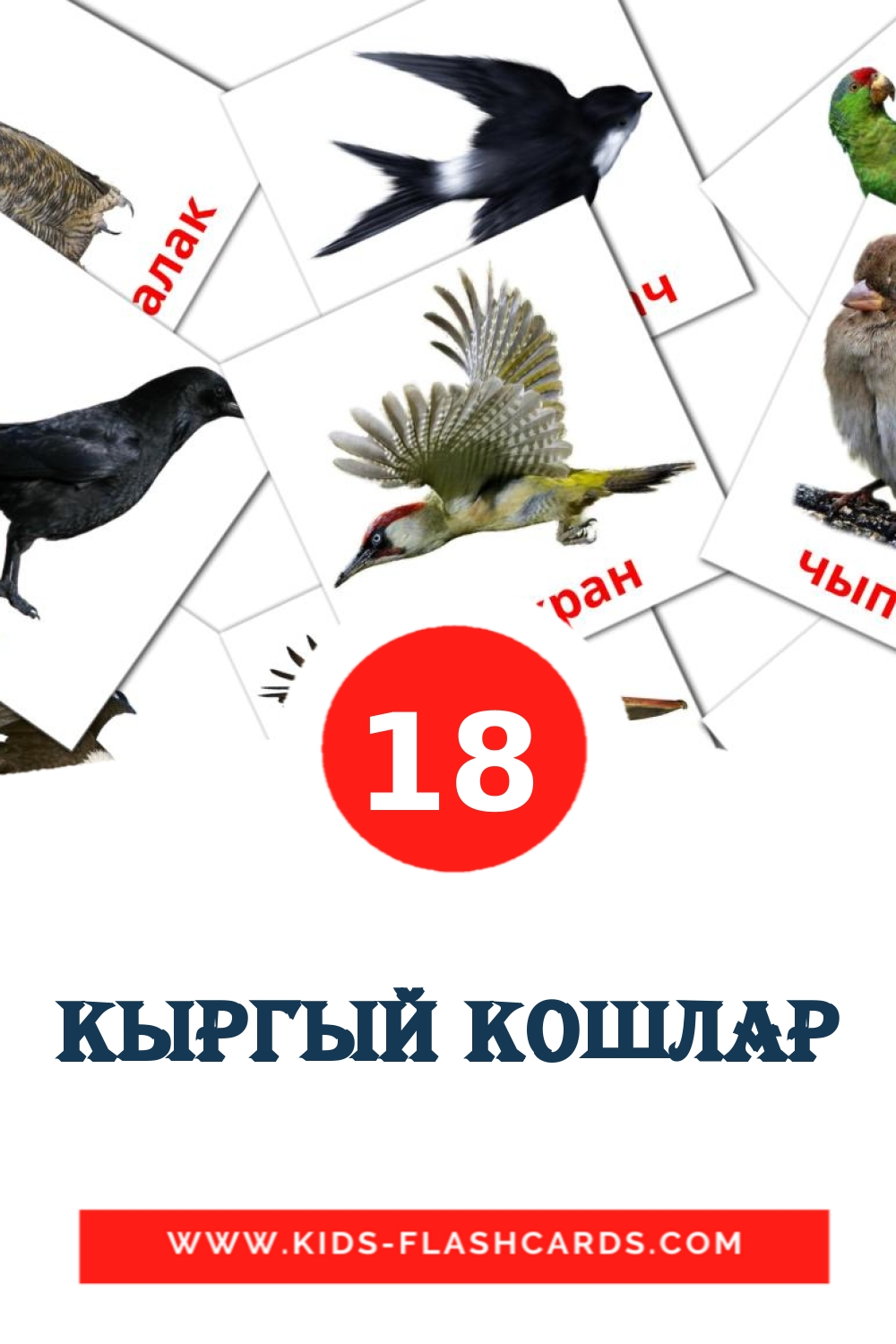 18 Кыргый кошлар Picture Cards for Kindergarden in tatar