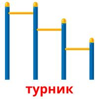 турник picture flashcards