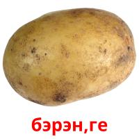 бэрэн,ге picture flashcards