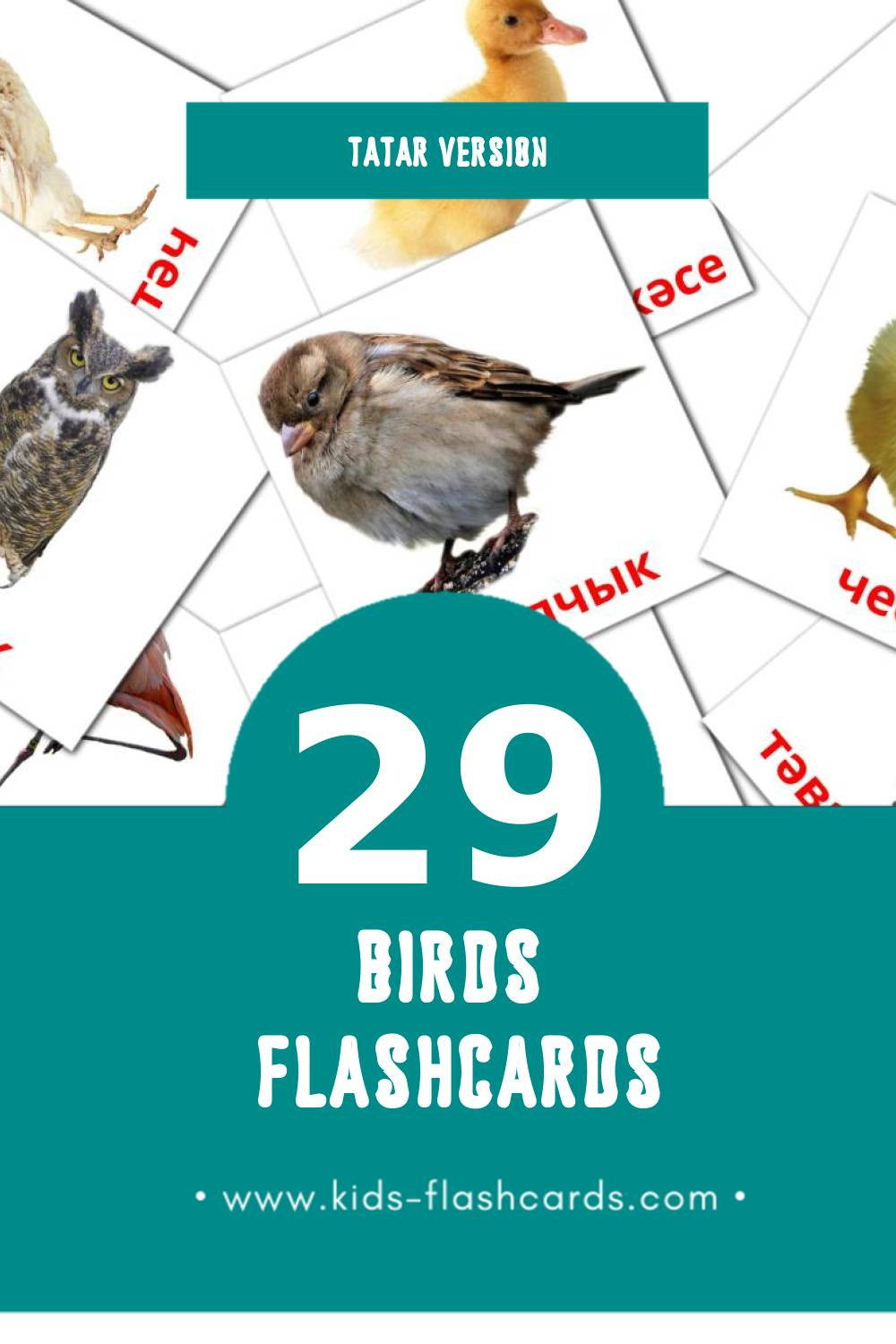 Visual Кош-корт Flashcards for Toddlers (29 cards in Tatar)