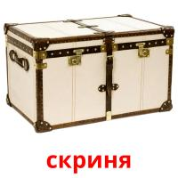 скриня picture flashcards