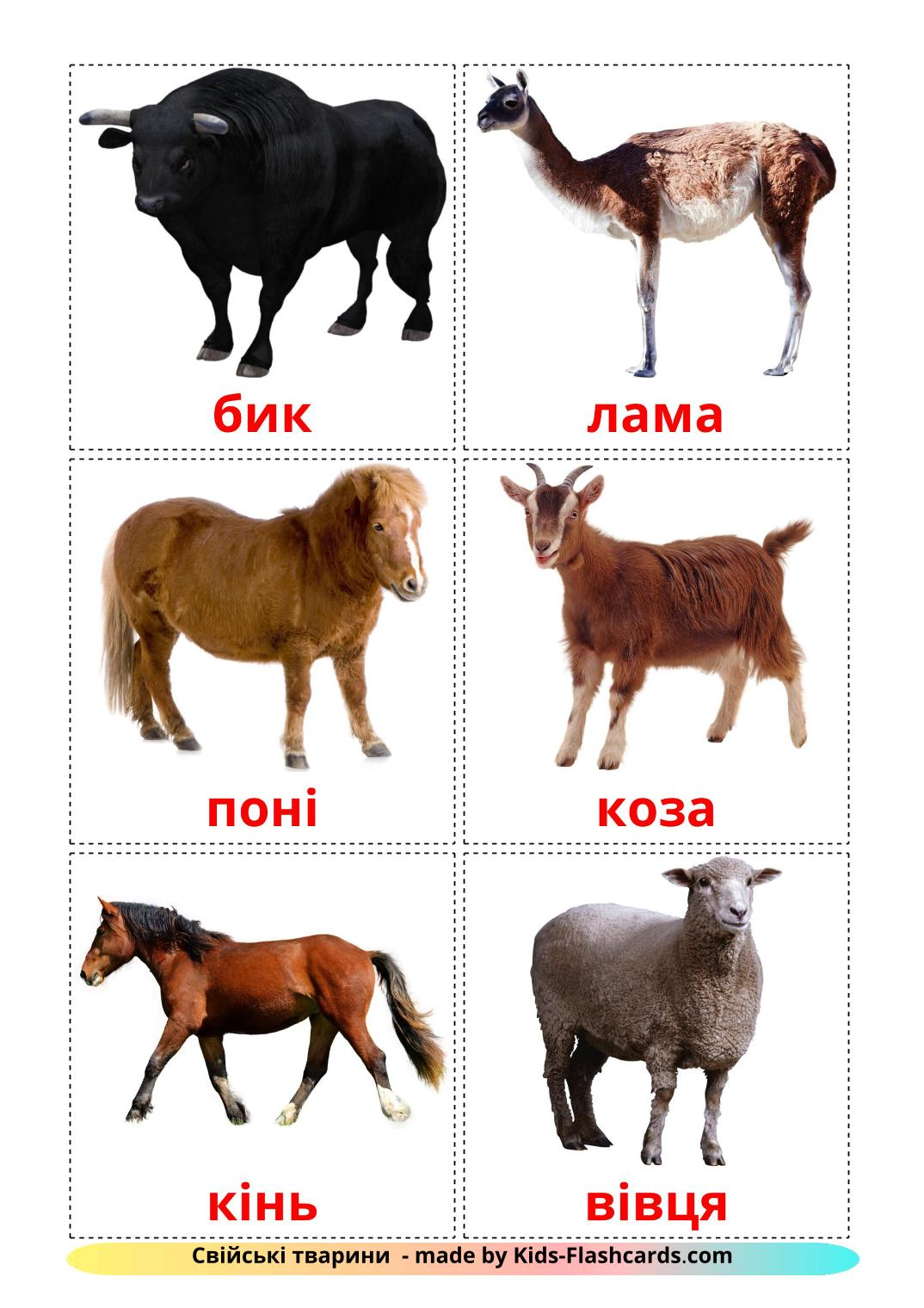 Farm animals - 15 Free Printable ukrainian Flashcards