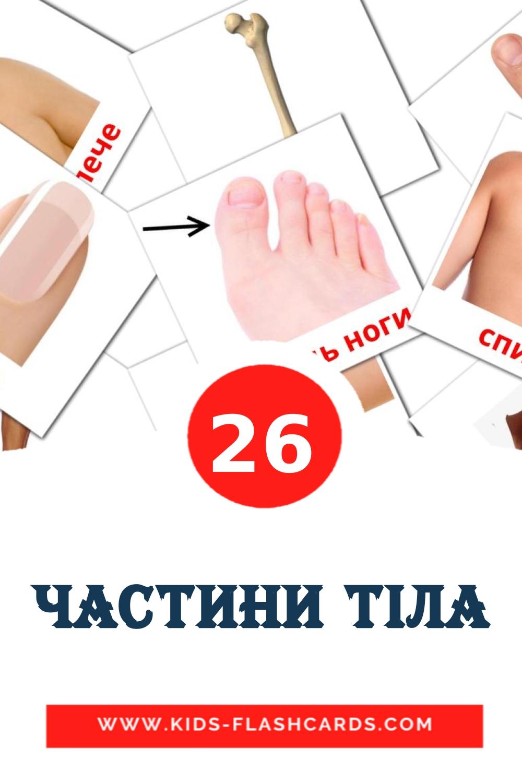 26 Частини тіла Picture Cards for Kindergarden in ukrainian