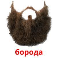 борода карточки энциклопедических знаний