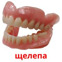щелепа picture flashcards
