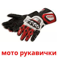мото рукавички picture flashcards