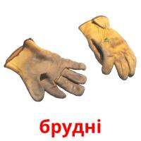 брудні picture flashcards