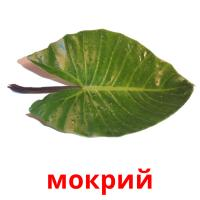 мокрий picture flashcards