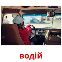 водій picture flashcards