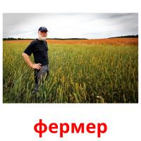 фермер picture flashcards