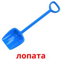 лопата picture flashcards