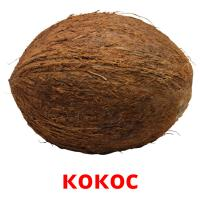 кокос picture flashcards