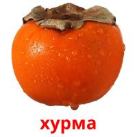 хурма picture flashcards