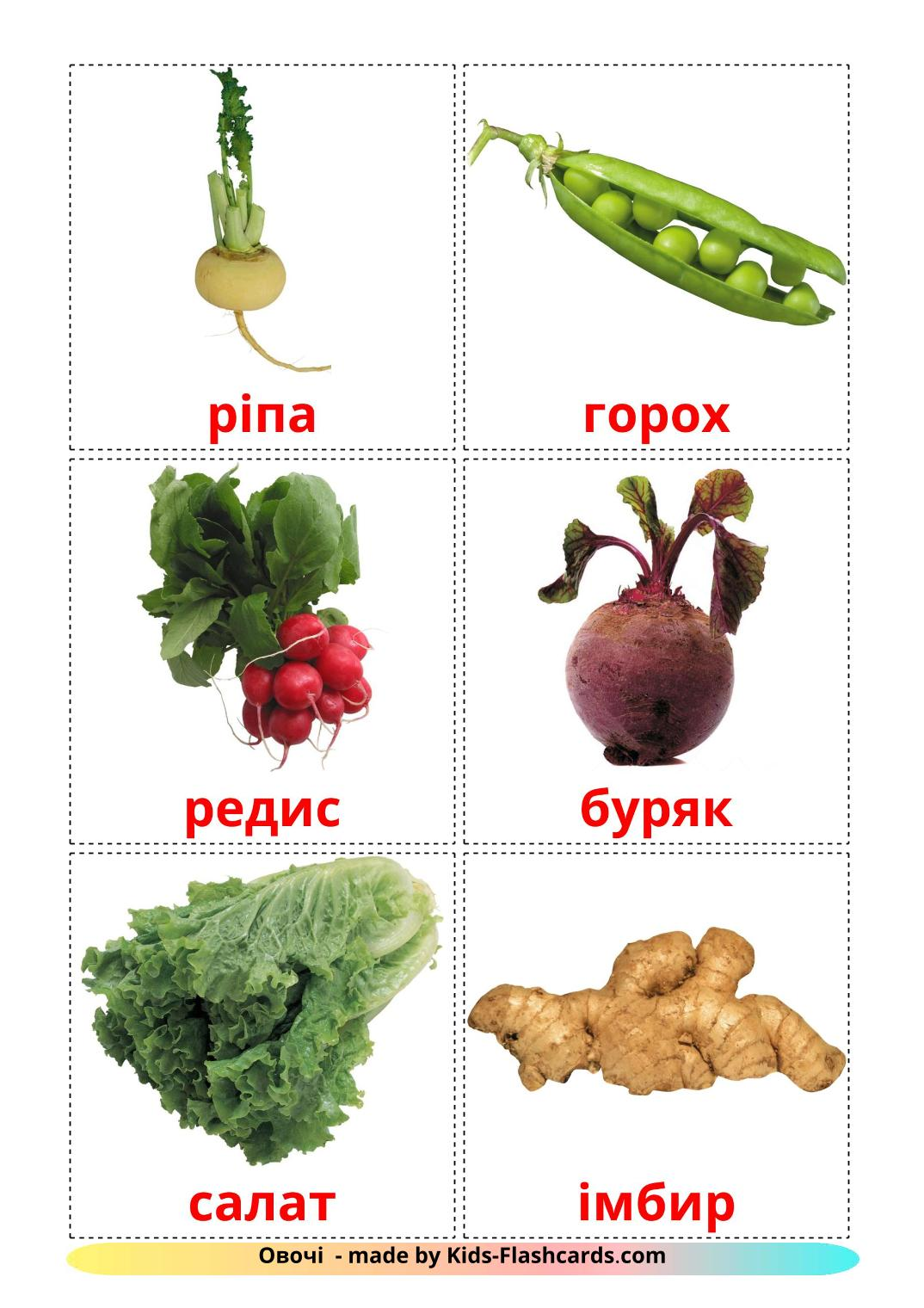 Vegetables - 29 Free Printable ukrainian Flashcards