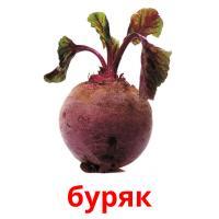 буряк picture flashcards