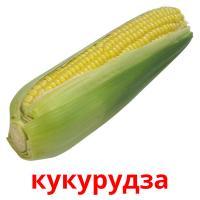 кукурудза picture flashcards