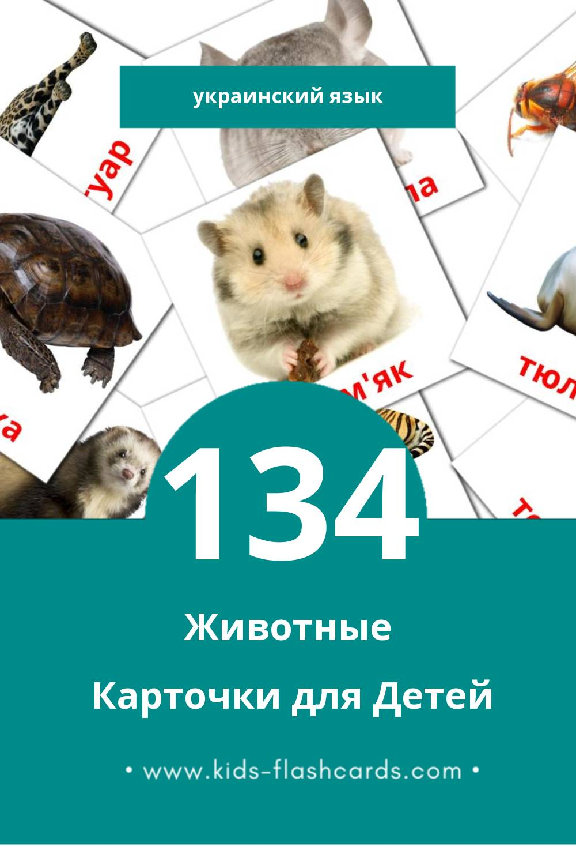 """""""Тварини"""" - Визуальный Украинском Словарь для Малышей (134 картинок)"""