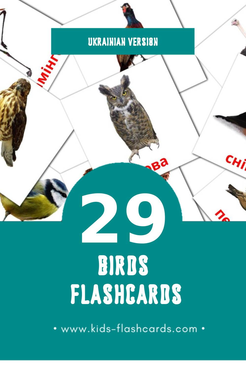Visual Птахи Flashcards for Toddlers (28 cards in Ukrainian)