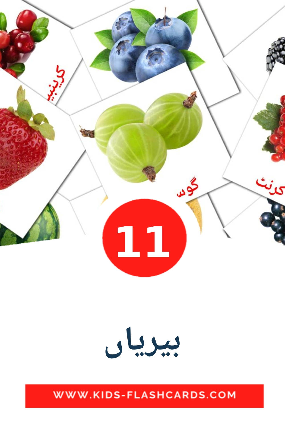 11 بیریاں Picture Cards for Kindergarden in urdu